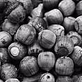 Black And White Acorns by Dan Sproul