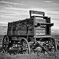 Black And White Covered Wagon by Athena Mckinzie