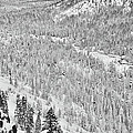 Black And White Lake Tahoe California Covered In Snow During The Winter by Brandon Bourdages