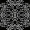 Black And White Medallion 7 by Angelina Vick