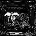 Black And White Orchid Flowers Growing Through Old Wooden Pictur by Alex Grichenko