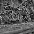 Black And White Pulley by Gary Ezell