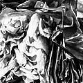 Black And White Ruffles by Jo-Anne Gazo-McKim