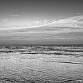 Black And White Seascape by Kristina Deane