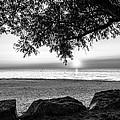 Black And White Sunset by Jim Markiewicz