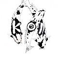 Black And White Trio Of Koi by Gordon Lavender
