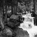 Black And White Waterfall by Tammy Burgess