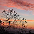 Black Balsam Spur Road Sunrise-blue Ridge Parkway by Mountains to the Sea Photo