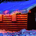 Black Bear Cabin by Optical Playground By MP Ray