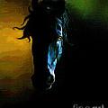 Black Beauty by Robert Foster