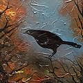 Black Bird by Sergey Bezhinets