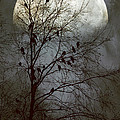 Black Birds Singing In The Dead Of Night by John Rivera
