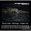 Black Calm - Old Stage - Lobster Pots by Barbara Griffin