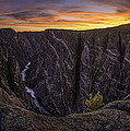 Black Canyon Of The Gunnison Colorado by Angela Moyer