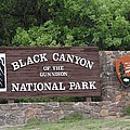 Black Canyon Of The Gunnison National Park by Dan Sproul