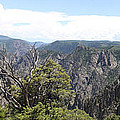 Black Canyon Of The Gunnison Panorama by Christiane Schulze Art And Photography