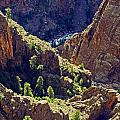 Black Canyon Of The Gunnison by Sally Weigand