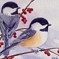 Black-capped Chickadees by Janet Zeh