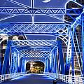 Black Cat Blue Bridge by Evie Carrier