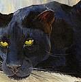 Black Cat by Jamie Frier