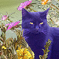 Black Cat Lurking In The Portulaca by Alice Ramirez