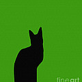 Black Cat On Lime Green Background by Barbara Griffin