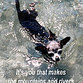 Black Chihuahua Dog Its You That Makes The Mountains And Rivers More Beautiful. by Christopher Shellhammer