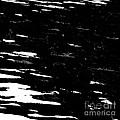Black Cinders In Winter by Tim Richards