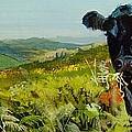 Black Cow Dartmoor by Mike Jory