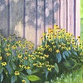 Black Eyed Susans by Deborah Butts