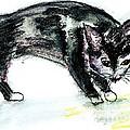Black Kitty by Lena Rydstrom