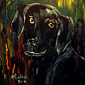 Black Lab IIi by Anna Sandhu Ray