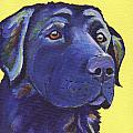Black Lab by Greg and Linda Halom