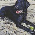 Black Lab On The Beach by Lee Ann Shepard