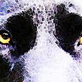 Black Labrador Retriever Dog Art - Lab Eyes by Sharon Cummings