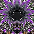 Black Magic Wand Fractal by Darleen Stry