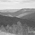 Black Mountain - Kentucky Bw by Mary Carol Story