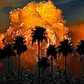 Black Palms At Dusk by David Lee Thompson