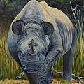 Black Rhino by Caroline Street