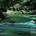 Black River Nj by Skip Willits