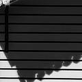 Black Shadow by Edgar Laureano
