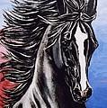 Black Stallion by Sheri Marean
