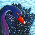 Black Swan by Rene Capone
