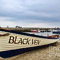 Black Ven by Susie Peek