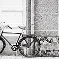 Black Vintage Bicycle by Jimmy Karlsson