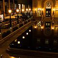 Black Water Golden Lights by Georgia Mizuleva