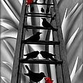 Blackbird Ladder by Barbara St Jean