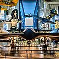 Blackbird Rear View by Randy Scherkenbach