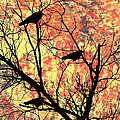 Blackbirds In A Tree by Bill Cannon