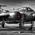 Blackburn Buccaneer by Jason Green